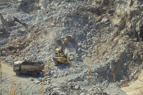 Vicem Sông Thao muốn có thêm vùng nguyên liệu tại Phú Thọ