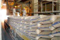 Hướng dẫn nhập khẩu sản phẩm, hàng hóa vật liệu xây dựng