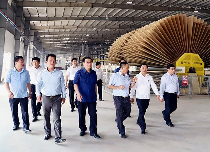 Khánh thành nhà máy gỗ MDF lớn nhất tỉnh Hà Tĩnh